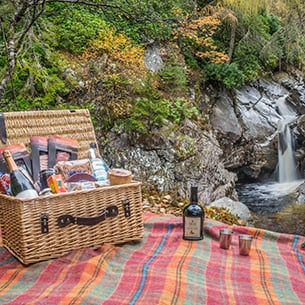 The Art of the Picnic