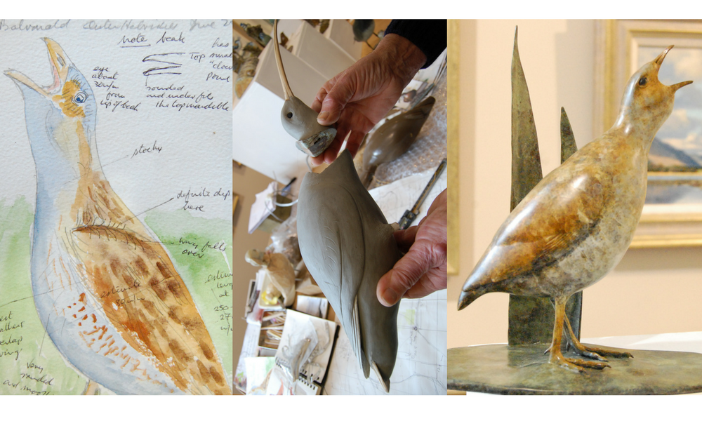 Eddie Hallam sketchbook drawing and watercolour with progress and final scupture of sea bird