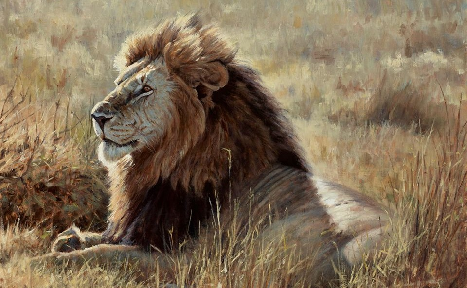Justin Prigmore art Lion on plains of Africa
