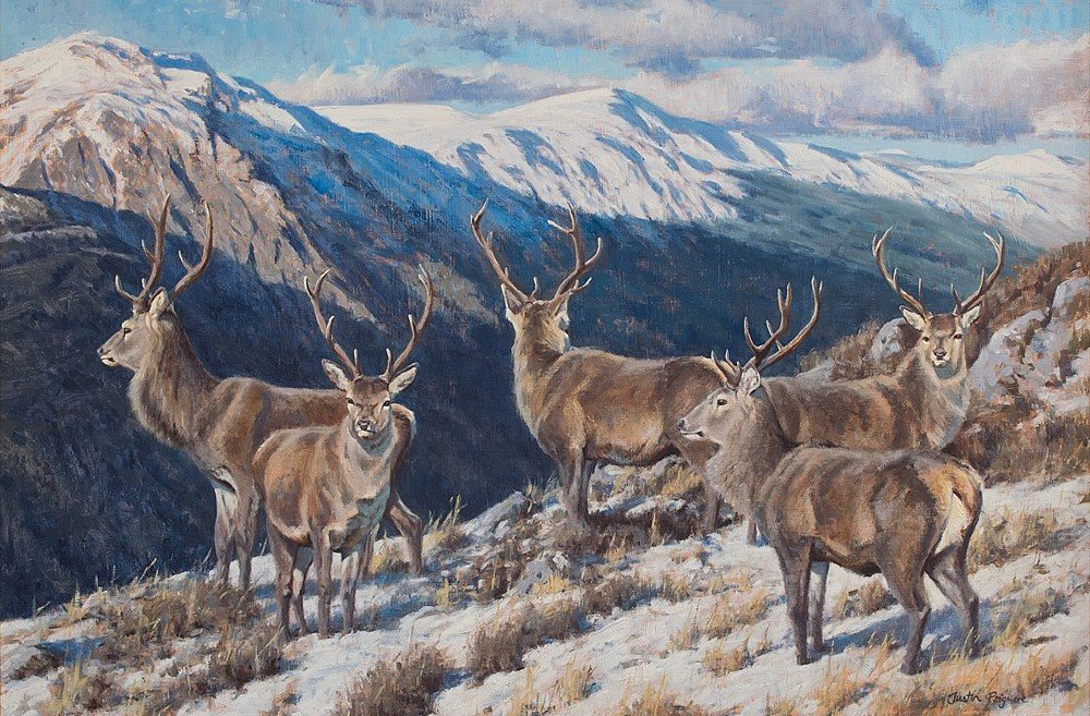 Justin Prigmore art stags on Scottish hills in snow