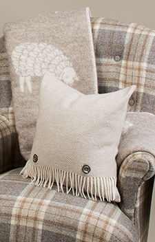 Cushions & Soft Furnishings