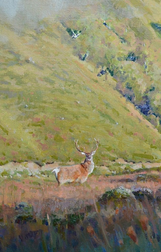 Stags Through the Long Grass by Ian MacGillivray
