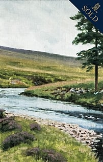 River Helmsdale, Garden Pool by Alistair Makinson