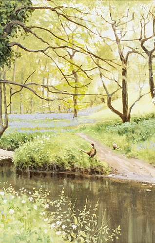 Spring Time by Alistair Makinson