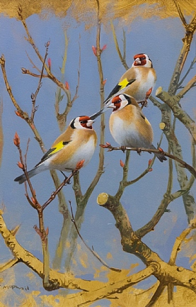 Goldfinches by Rodger McPhail