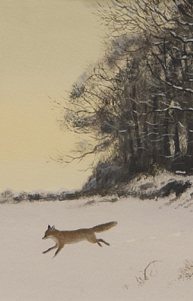 Fox in Snow by Rodger McPhail