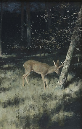 Roe Deer in Moonlight by Rodger McPhail