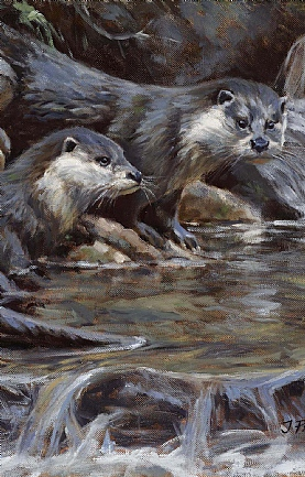 Otter Pair by Justin Prigmore