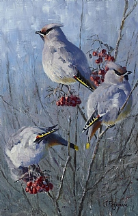 Winter Visitors - Waxwings by Justin Prigmore