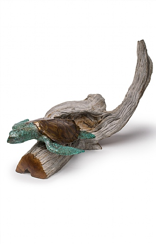 Medium Turtle I on Driftwood  by Pete Johnston