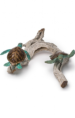 Playful Turtles on Driftwood  by Pete Johnston