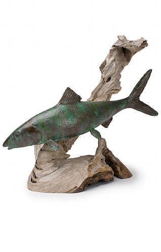 Stealthy Bonefish on Driftwood  by Pete Johnston