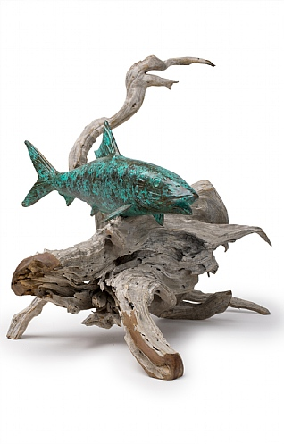Single Bonefish on Driftwood  by Pete Johnston
