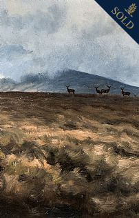 Stags on High Ground by Alastair Proud