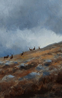 Stags Moving On The Hill by Alastair Proud