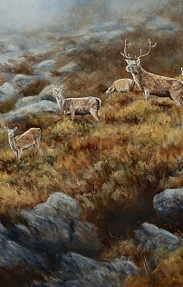 And The Mist Came Down, Stag and Hinds by Alastair Proud