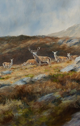 Stags and Hinds Above Loch Maree by Alastair Proud