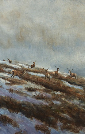 Stags on the Hill, Snow in the Air by Alastair Proud