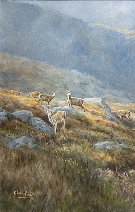 Towards the Lairig Ghru - Stags and Hinds by Alastair Proud