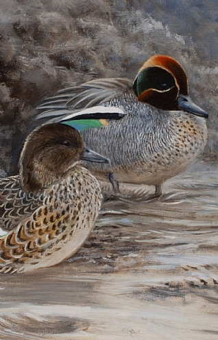 Teal Resting by Alastair Proud
