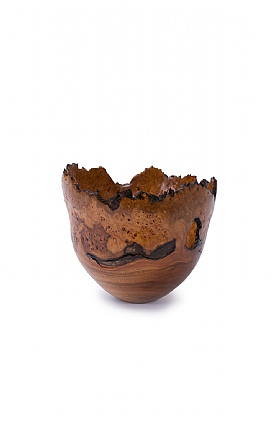 Wet Turned Burr Elm Bowl by Angus Clyne