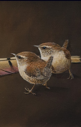 Wrens and Pheasant Feather by Richard Whittlestone