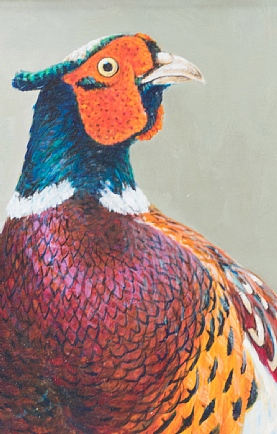 Pheasant Portrait by Richard Whittlestone
