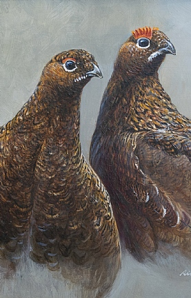 Red Grouse Pair by Richard Whittlestone