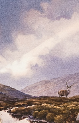 Sunshaft Stag by Owen Williams