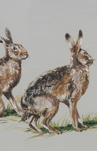 A Husk of Hares by Nicola Kevane