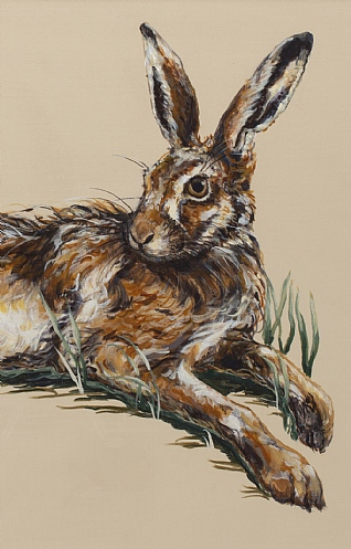 Hare Resting in Spring Wheat II by Nicola Kevane