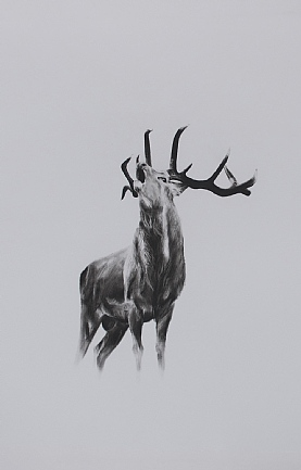 The Rut by Katie Hargreaves
