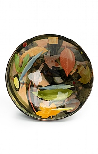 Autumn Leaves Shallow Bowl by Sophie MacCarthy