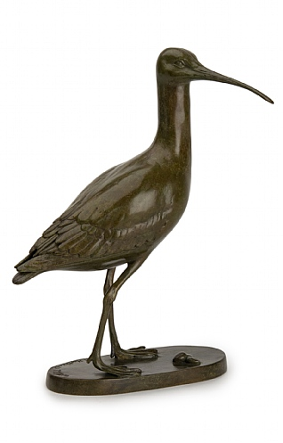Curlew by Patricia Northcroft