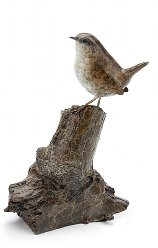 Wren on Tree Stump by Eddie Hallam