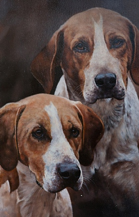 Hounds by Stephen Park