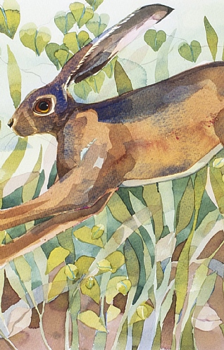 March Hares by Mary Ann Rogers