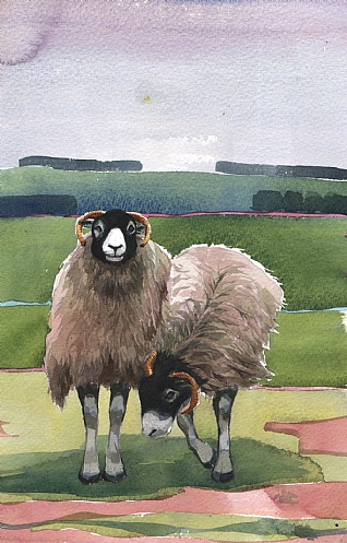 Ewe Two by Mary Ann Rogers