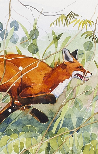 Running Fox by Mary Ann Rogers