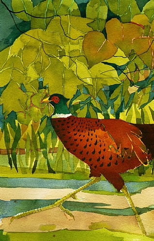Running Pheasant by Mary Ann Rogers