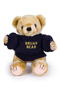 Benjie The Bruar Bear