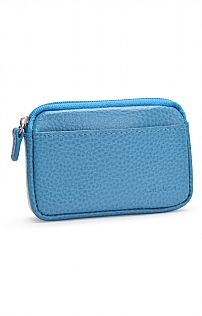 Purse with Card Holder