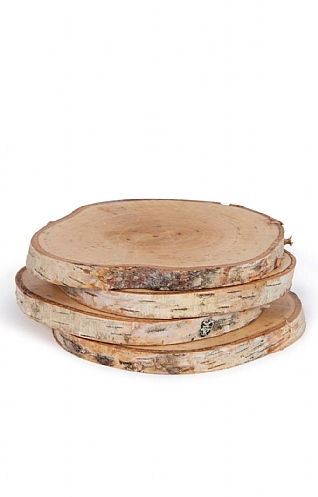 Set of Four Silver Birch Coasters
