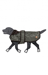 Small Quilted Dog Coat