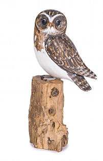 Hand Carved Little Owl on Log