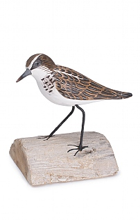 Hand Carved Little Stint Standing