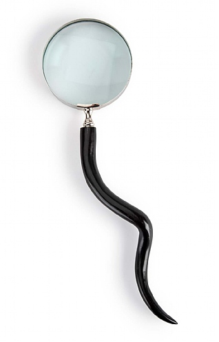 Horn Magnifying Glass