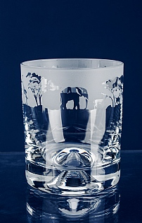 Set of 6 Engraved Crystal Whisky Tumblers