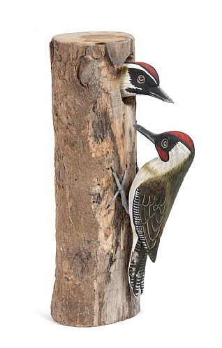 Double Green Woodpecker