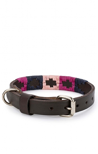 Argentinean Dog Collar